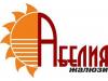 АБЕЛИЯ Новосибирск