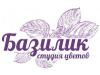 БАЗИЛИК Интернет-магазин Новосибирск