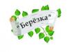 БЕРЕЗКА, центр учебно-методических пособий Новосибирск